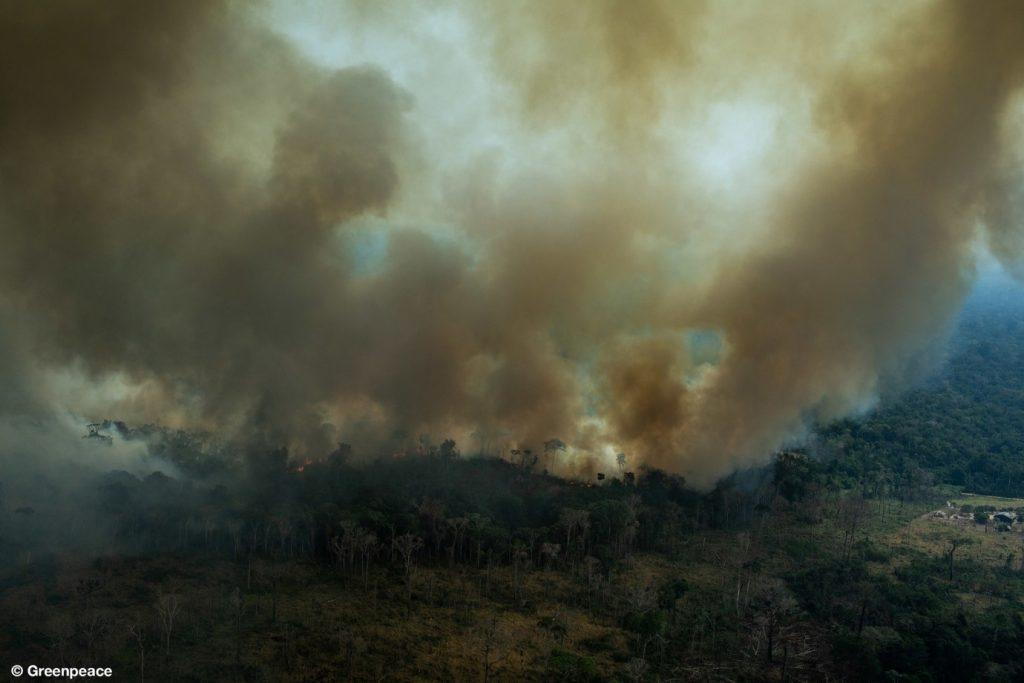 अमेज़न: ब्राज़ील के दावे झूठे, जानकारों ने हालात बिगड़ने की चेतावनी दी
