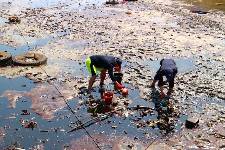 पर्यावरण से जुड़े अपराध 790% बढ़े: NCRB