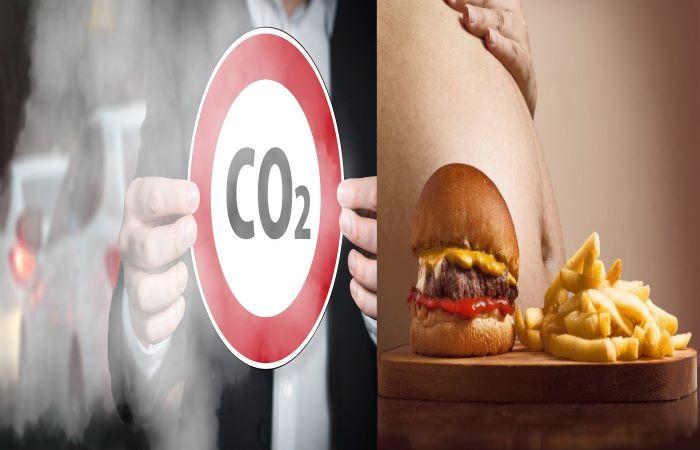 प्रदूषित हवा में साँस लेना मतलब चिकनाई-युक्त आहार लेना!