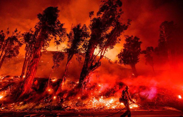दुनिया के कई हिस्सों में आग से तबाही