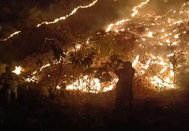 उत्तराखंड: जंगलों में आग पर अदालत ने शीर्ष वन अधिकारी को तलब किया