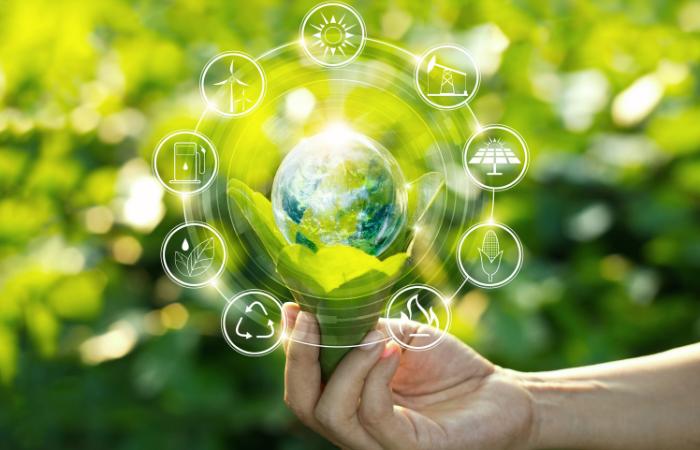 एनएलसी ने साफ ऊर्जा उत्पादन क्षमता 39% बढ़ाई