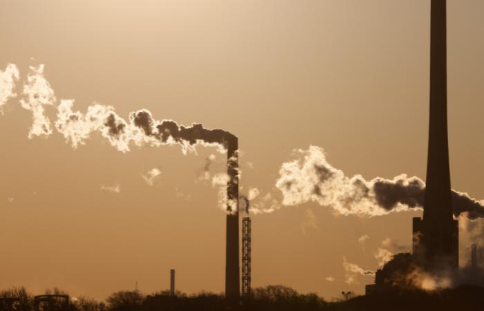 देश के 50% कोयला बिजलीघर नहीं कर रहे जल खपत नियमों का