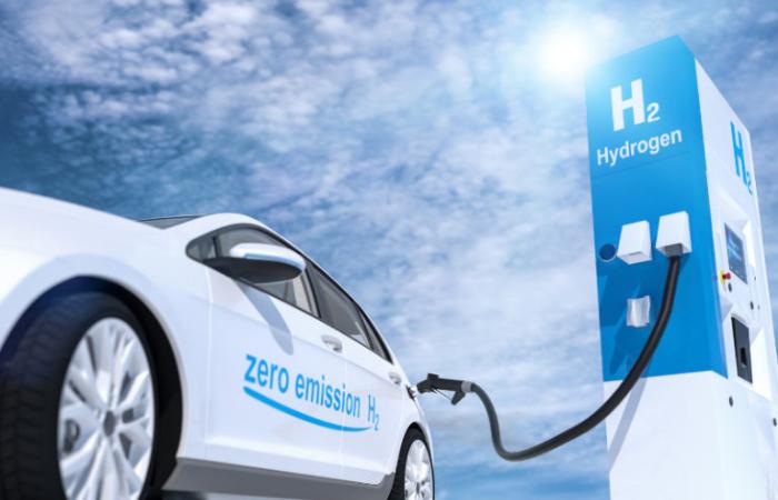 दिल्ली हाइकोर्ट: फेम-II के तहत हाइड्रोजन ईंधन सेल वाहन पर विचार करे सरकार
