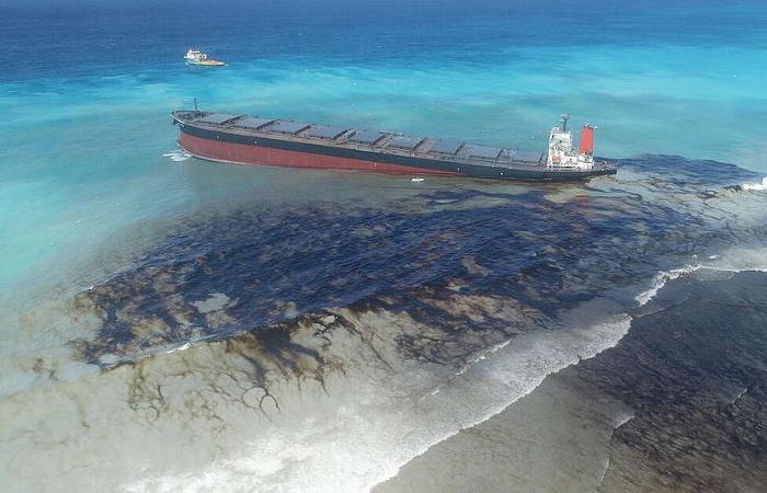 भाभा एटोमिक रिसर्च सेंटर ने तेल को सोखने की तकनीक विकसित की