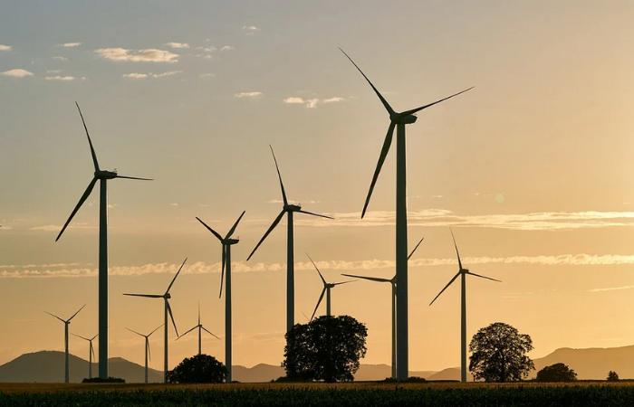 साफ ऊर्जा लक्ष्य हासिल करने के लिये भूमि इस्तेमाल में समझदारी दिखानी होगी: IEEFA